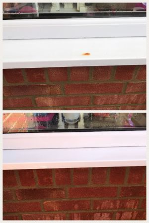 Stubborn Rust Stain Removal